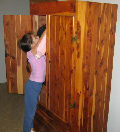 Click On Image For Larger View Of This Armoire